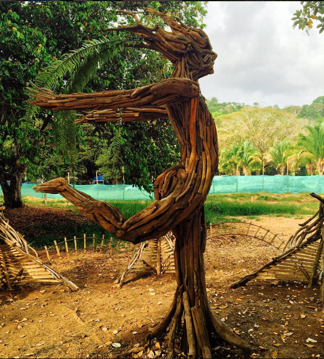 Chakira driftwood sculpture art envision festival costa rica chakira driftwood sculpture art envision festival costa rica 2016 design collaboration with jacquelin pitre inspired by the heart chakra symbol biocorpaavc Gallery