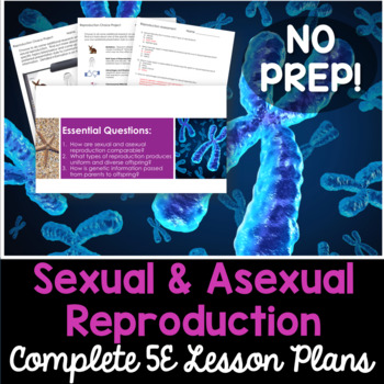Photo of Sexual and Asexual Reproduction Complete 5E Lesson Plan – Distance Learning