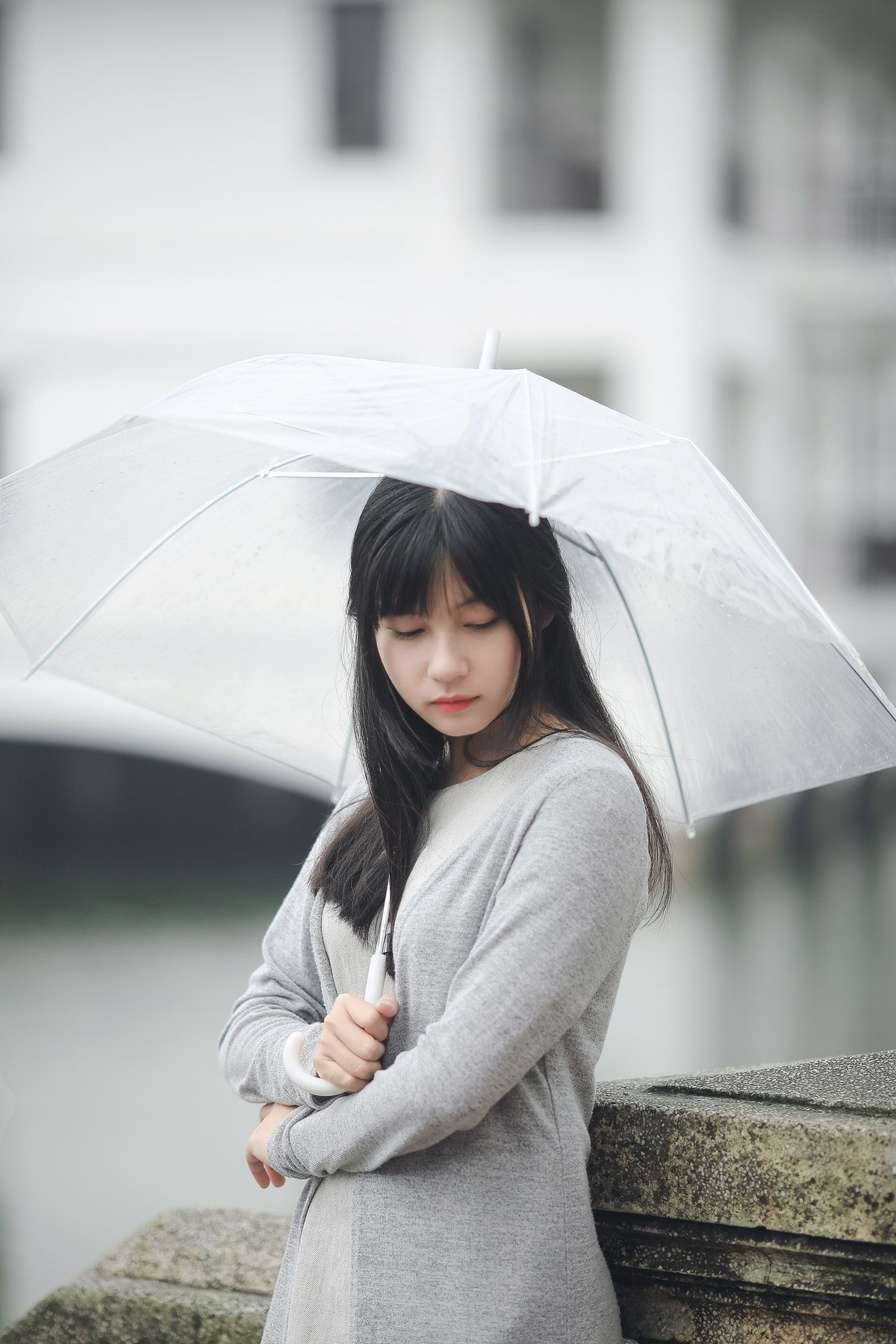 Woman Wearing Gray Sweater Holding Clear Umbrella Free Stock Photo #clearumbrella Woman Wearing Gray Sweater Holding Clear Umbrella Free Stock Photo #clearumbrella Woman Wearing Gray Sweater Holding Clear Umbrella Free Stock Photo #clearumbrella Woman Wearing Gray Sweater Holding Clear Umbrella Free Stock Photo #clearumbrella