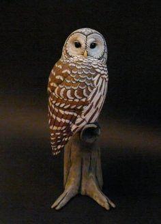 Barred owl tupulo wood carving artwork by tim mceachern bird