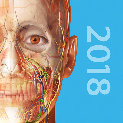 Human Anatomy Atlas 2018 powerful & interactive 3D models of male ...