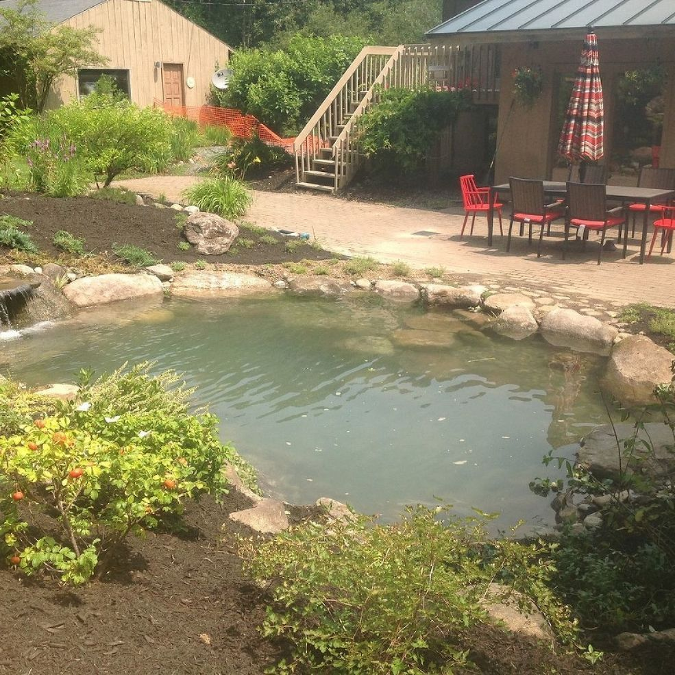 Amazing Backyard Pond Installation Ponds Backyard Pond Water Features Pond Landscaping