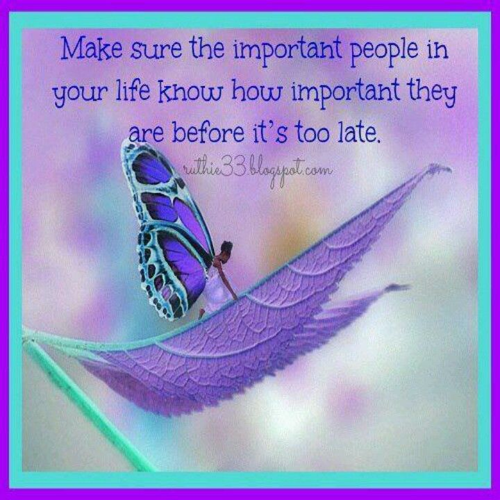 Purple butterfly.
