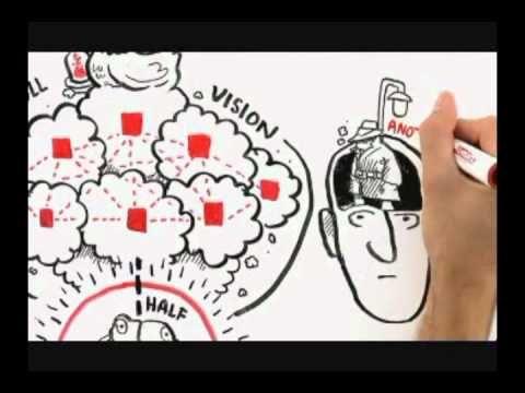WHERE GOOD IDEAS COME FROM by Steven Johnson (Español - Spanish)