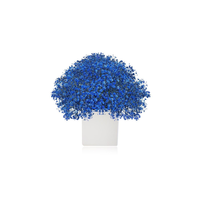 Tinted Gypsophila Baby\'s Breath - EbloomsDirect #Babys,#Breath,#Blue ...