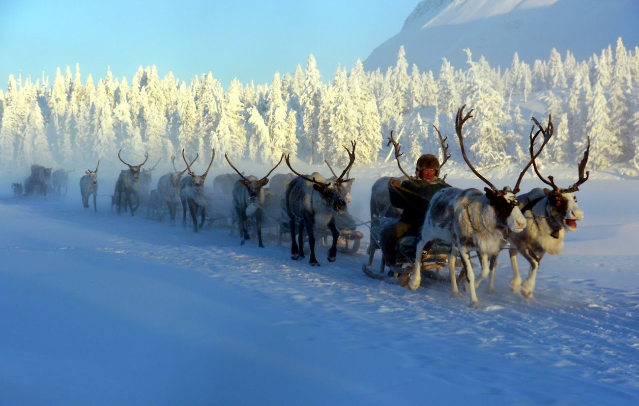 World's Coldest and Ground Frozen Village, Oymyakon, Russia | Coldest place  on earth, Coldest city on earth, Yakutsk