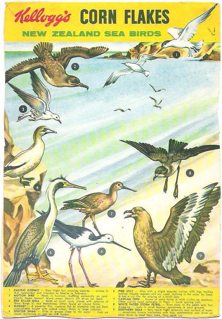 1960s Kellogg's NZ Sea Birds Packet Back in 2020 Sea