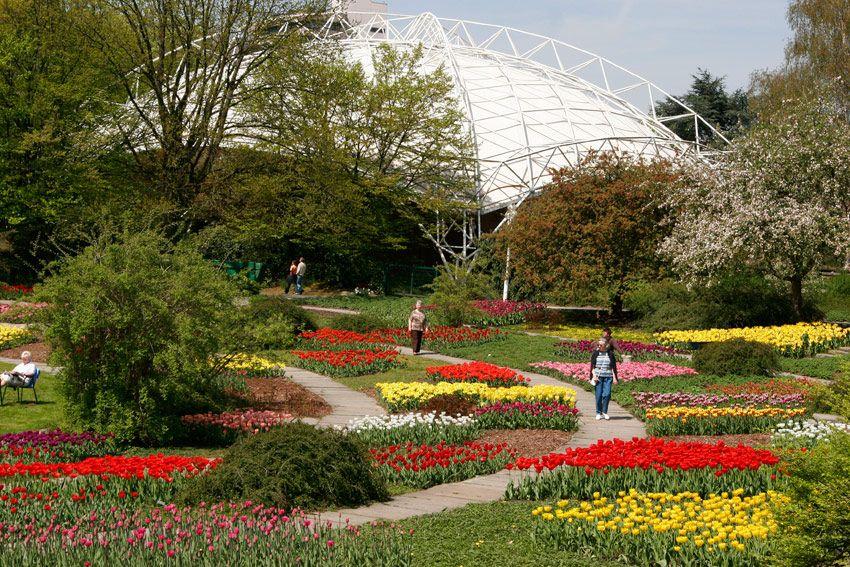 Ein Botanischer Garten Mit Schonen Und Seltenen Pflanzen Ein Attraktiver Tierpark Ein Spiel Und Sportparadies Ein Grugapark Essen Ausflug Seltene Pflanzen