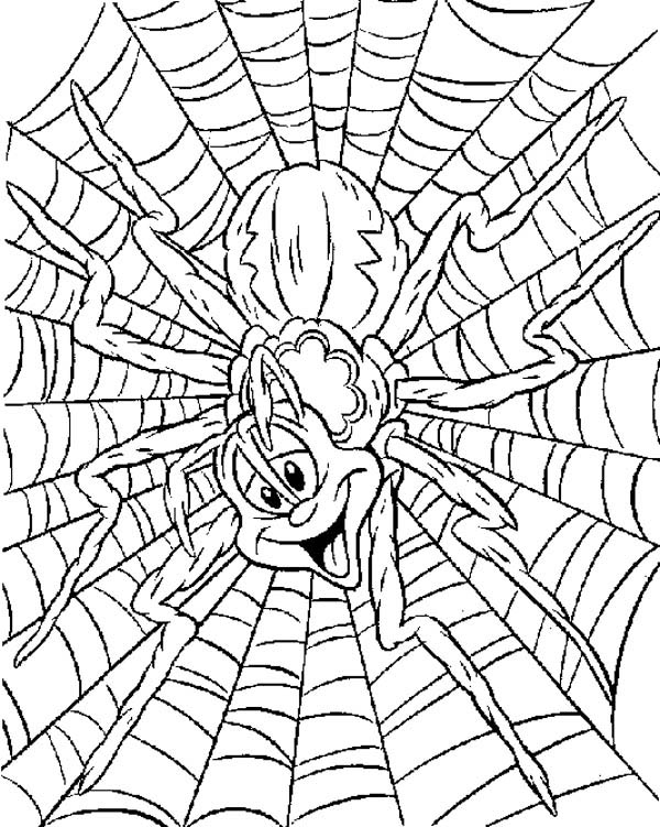 Pin oleh NetArt di Spider Coloring Pages
