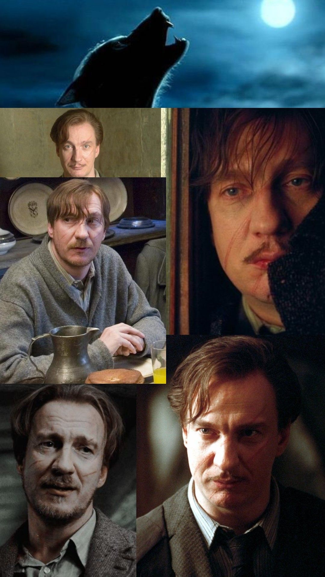 Remus Lupin Lupin Harry Potter Remus Lupin Wallpaper Harry Potter Pictures
