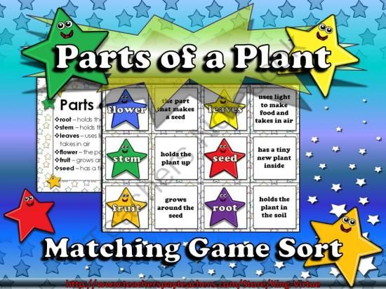 Plants  Parts Of A Plant Matching Game Sort From King