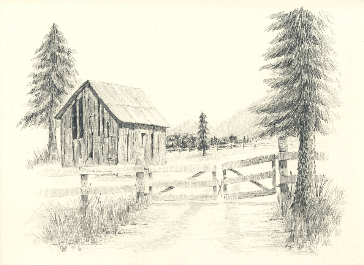 Old Ranch Barn Pencil Drawing Print Wood fences Pine tree and