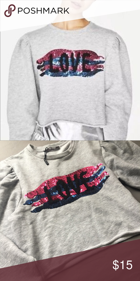 NWOT Zara Crop Top Sweatshirt Really cute Zara Trafaluc