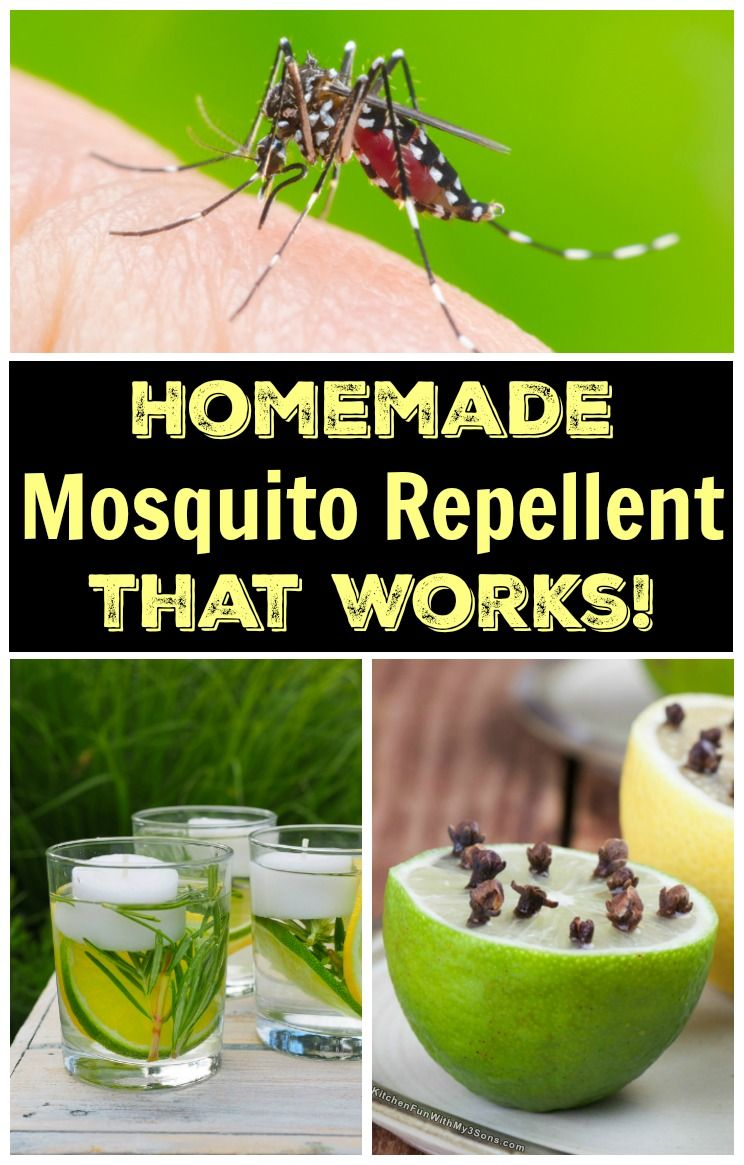 Natural Homemade Mosquito Repellent That Actually Works Diy
