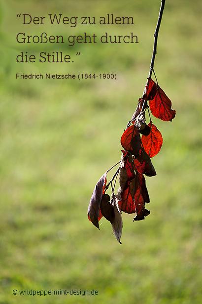 Zitat Von Nietzsche Stille C Www Wildpeppermint Design De Zitate Weisheiten Spruche Deutsche Zitate