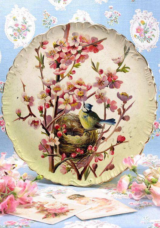 Vintage Home Handpainted Victorian Bird And Blossom Plate Platos Decorativos Pinturas Porcelana