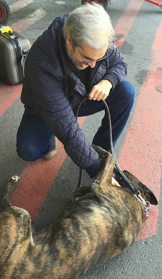 Prince moulay Hicham plays with an airport security dog