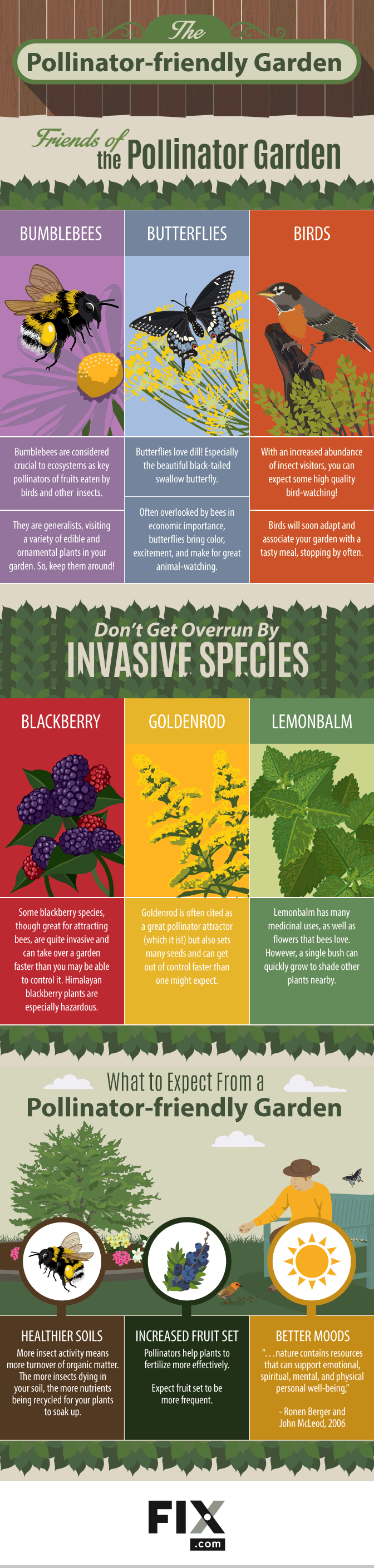 The Pollinator-Friendly Garden #Infographic