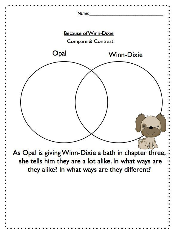 Comprehension Questions - Because of Winn-Dixie ...