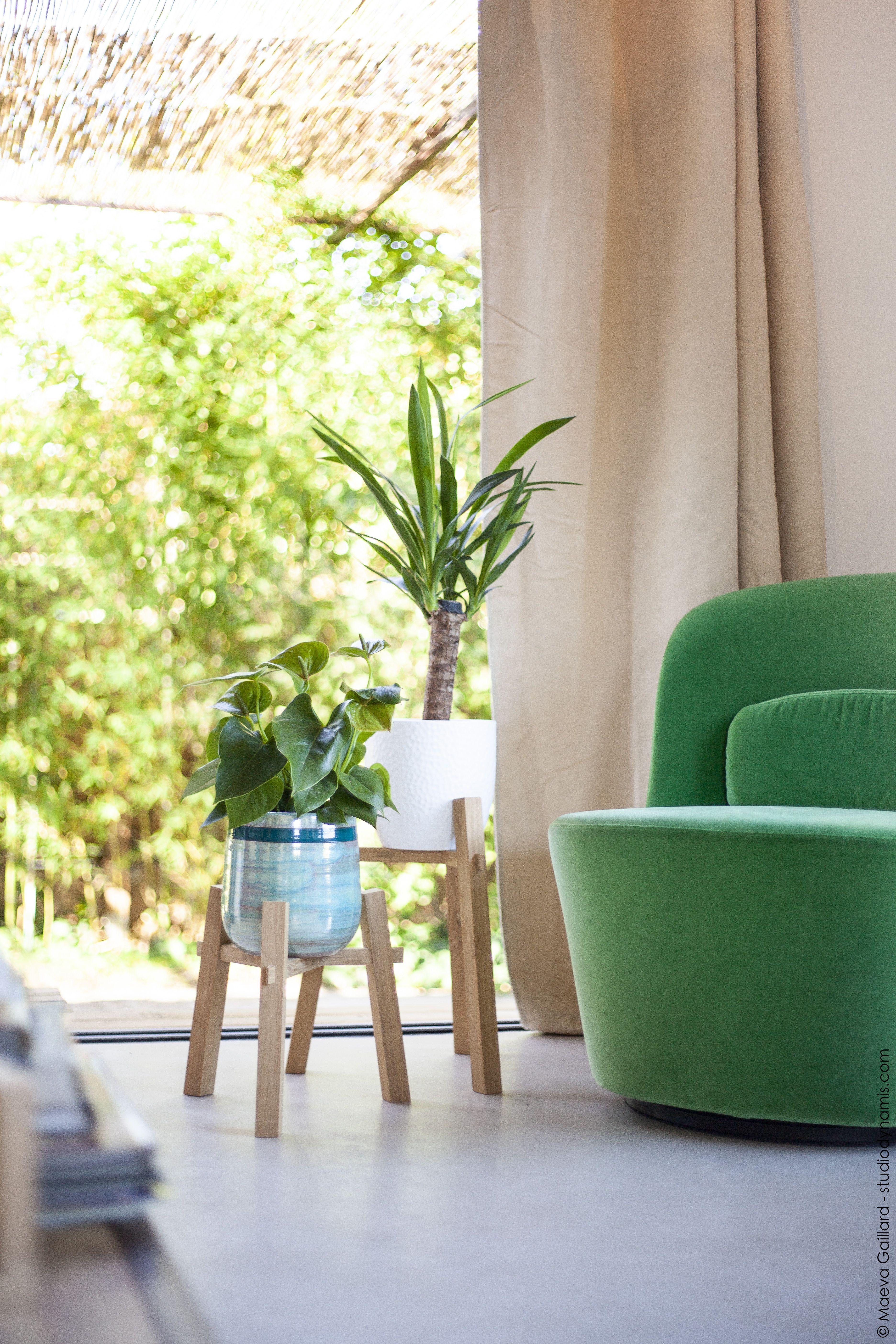 Pot Plastique Grande Taille support de plantes grande taille | support plante, support