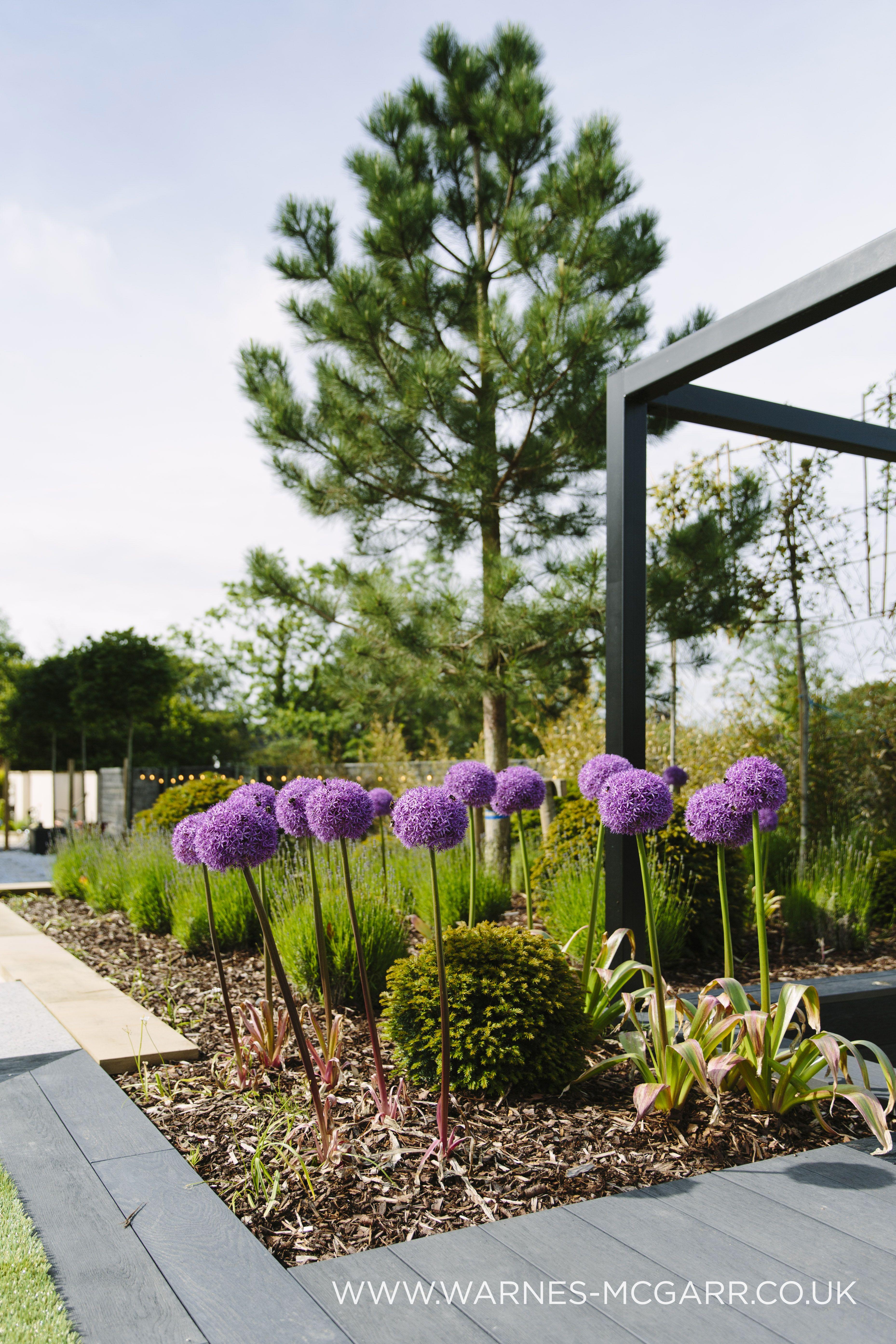 Garden Design For A Luxury Property In Ramsbottom Lancashire Warnes Mcgarr Co In 2020 Luxury Garden Luxury Garden Design Garden Design