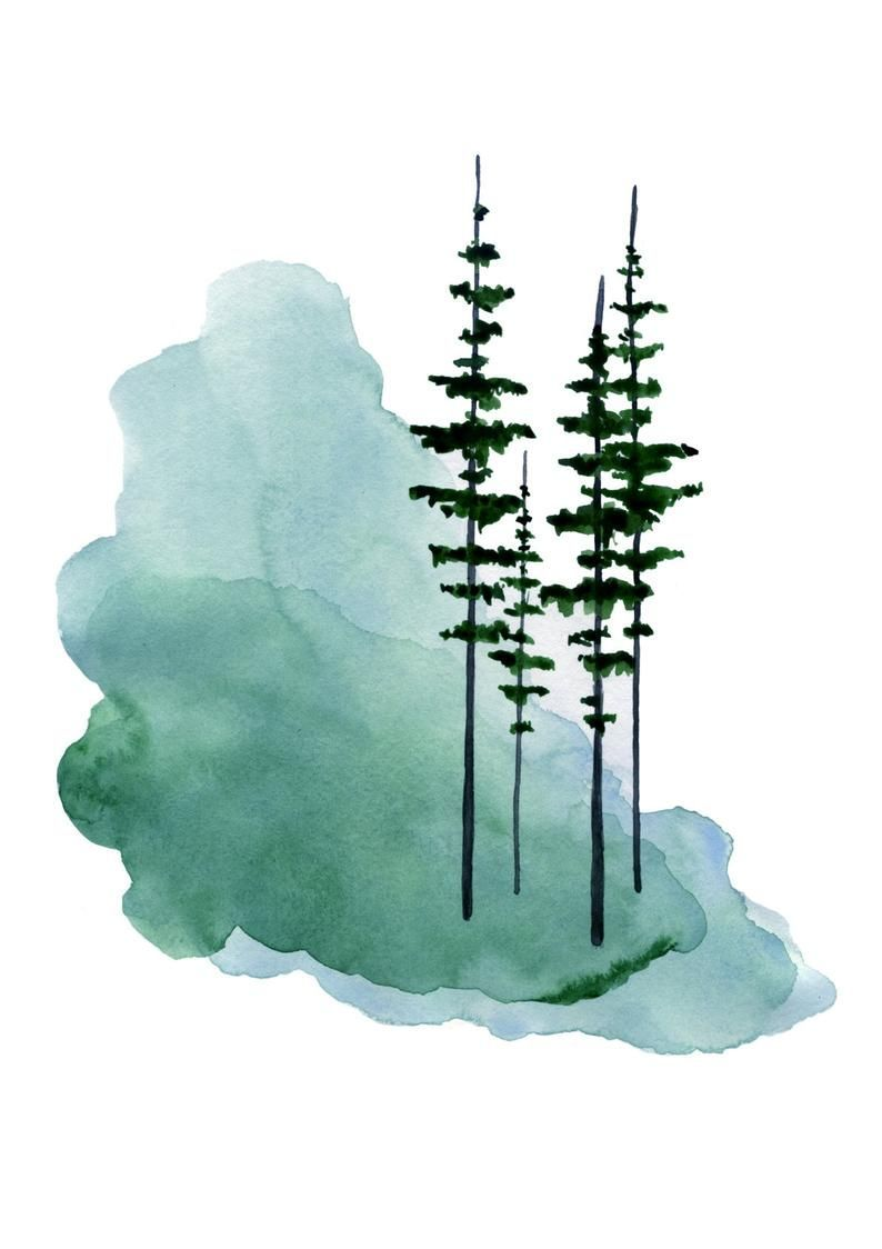 Pine Tree Print Evergreen Trees Watercolor Painting Pine Tree Forest Misty Forest Scandinavian Print In 2020 Tree Watercolor Painting Pine Tree Painting Pine Tree Art