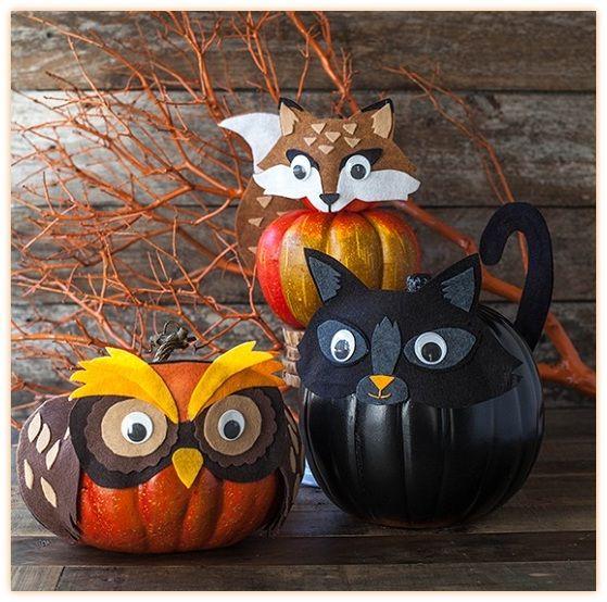 Fotos De Calabazas Para Halloween o Noche De Brujas Imagenes Para