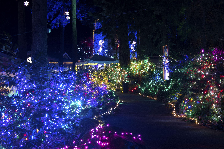 Christmas Festival Of Lights Festival Lights Best Christmas Light Displays Christmas Light Displays