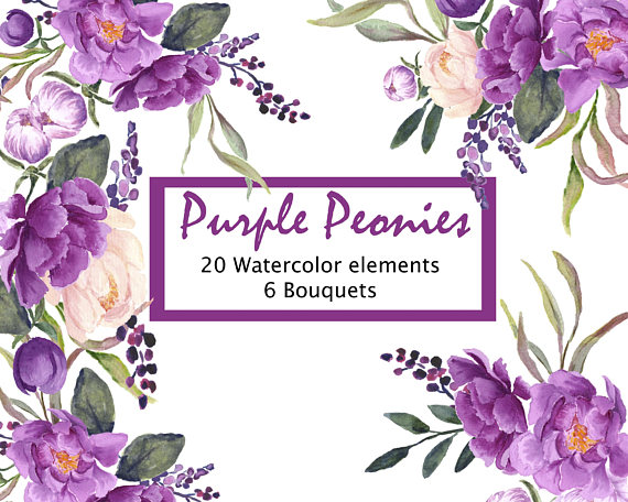 Purple Peonies Hand Painted Floral Clip Art Purple And Blush Pink
