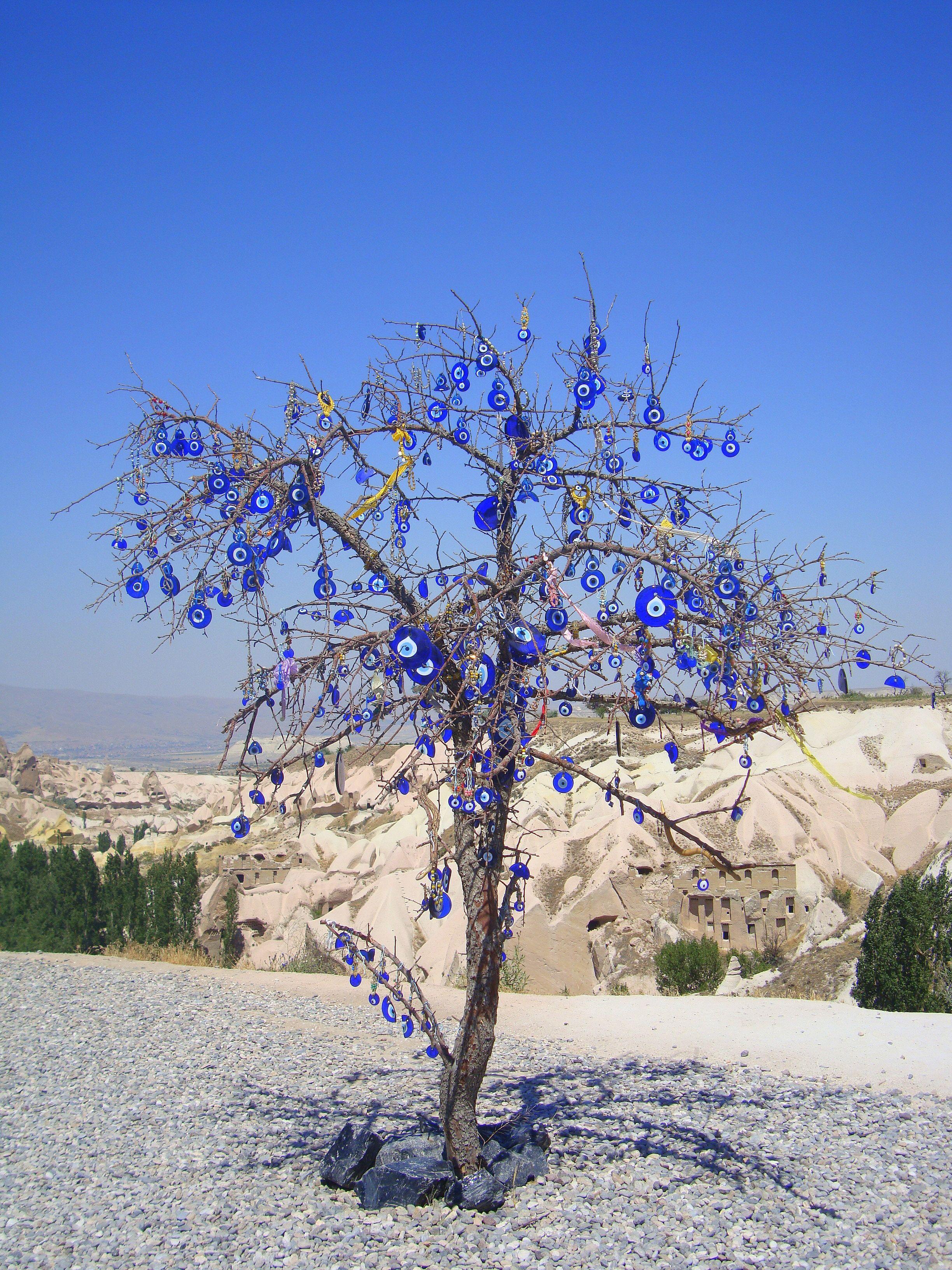 evil eye tree turkish treasures pinterest greek evil