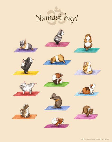 Die Yoga Meerschweinchen Sammlung Art Print - Yoguineas Namast-Heu Plakatkunst niedlich yoga #framesandborders