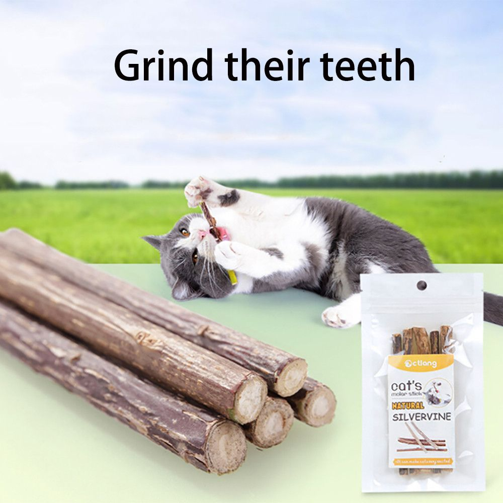 72 Cashback 23 Off 5pcs Set Pet Cat Chew Sticks Toy Wooden Polygama Kitten Teeth Cleaning Catn Best Interactive Cat Toys Cats And Kittens Kitten Cleaning