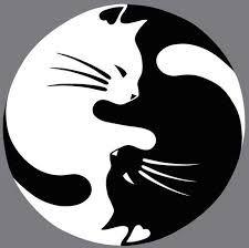 """Résultat de recherche d'images pour """"dessin de yin et yang"""""""