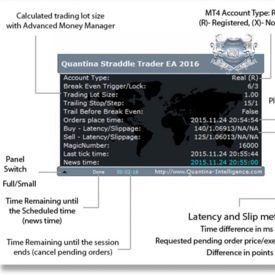 Quantina Straddle Trader Expert Advisor For Metatrader 4