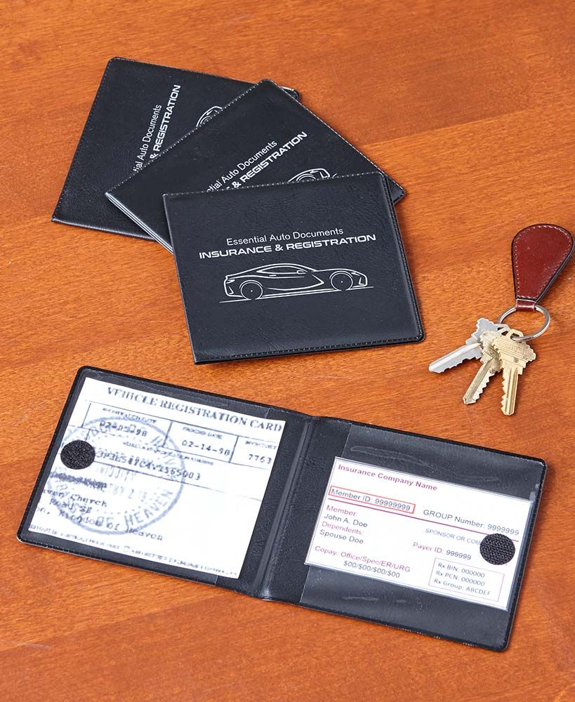 Set of 4 car registration and insurance holders lakeside