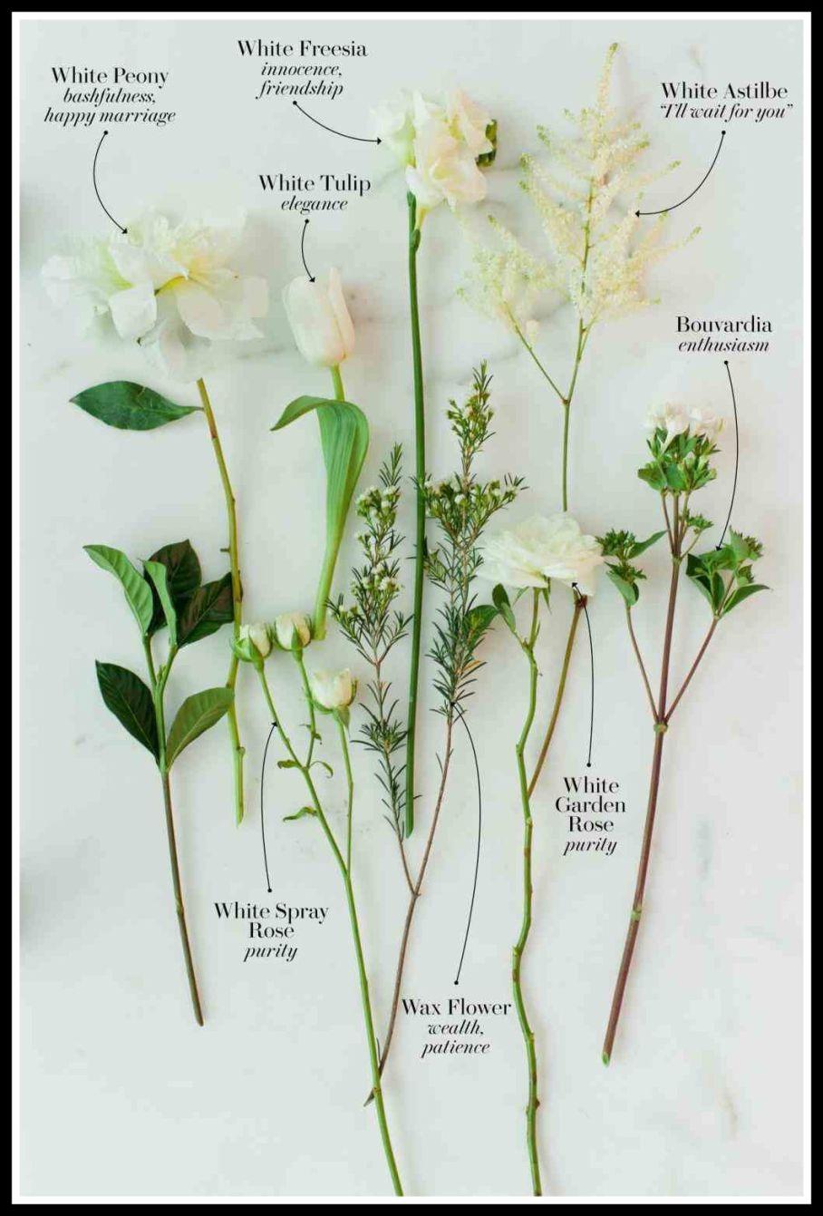 Image Result For Tulip Bouvardia Bouquet Language Of Flowers Bouvardia Flowers Romantic Flowers