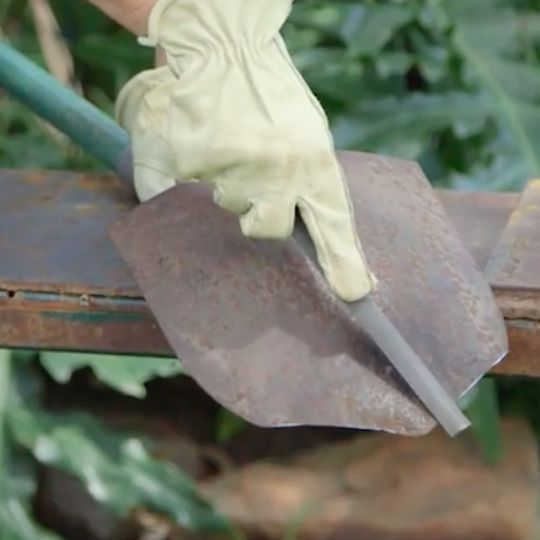 Video Sharpen Up Garden Spades Don T Let A Dull Spade Keep You From Digging Yourself A Deeper Hole Garden Spade Vegetable Garden Tips Garden Trellis