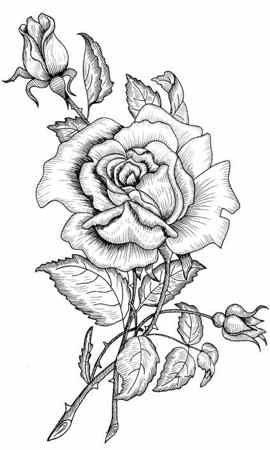 Resultado de imagen para flores para bordar | Cajas vintage ...