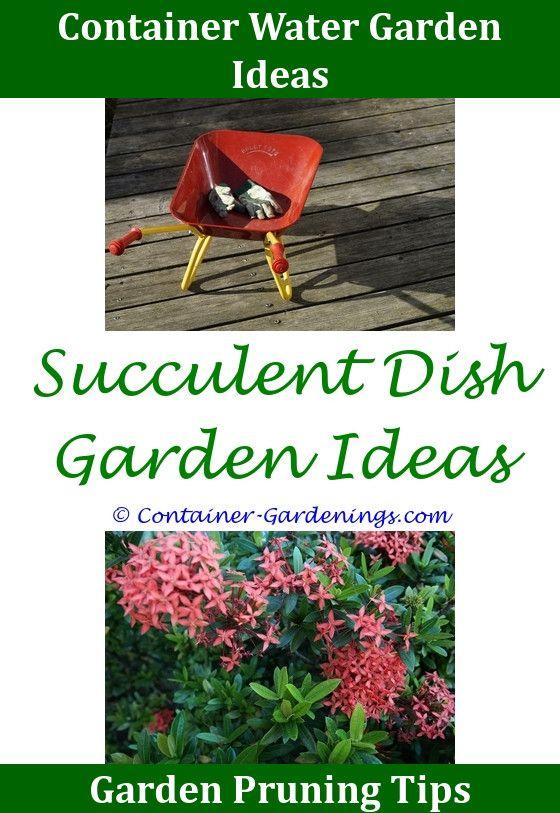Gargen School Garden Project Ideas,Gargen cottage front garden ideas ...