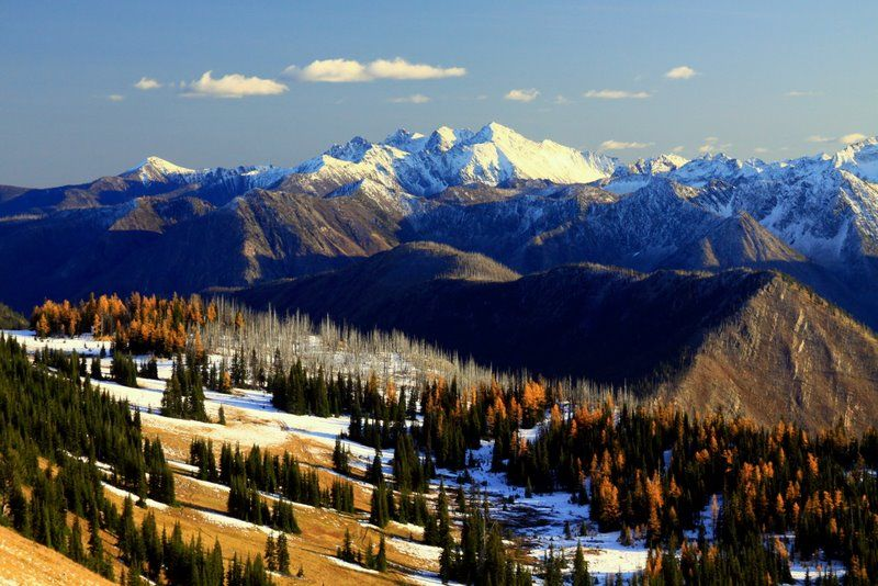 ...first snow at harts pass...north cascades basecamp...mazama...methow valley....washington...brilliant....This photo is by Bernie Krause