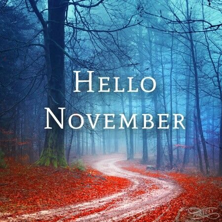 Delightful Hello November,please Be Good To Me 🍁 (made With