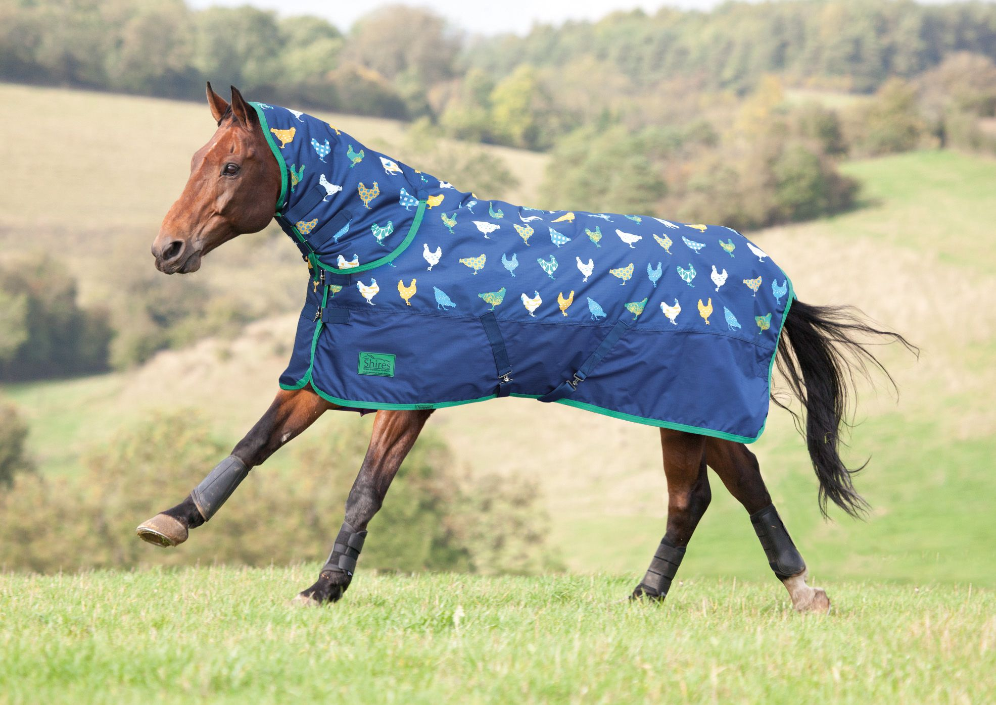 Shires Tempest Original 200g Combo Chicken Print Sizes From 4ft 7ft Retailing At 59 99 Zoarsark Shires Rug Horse Rugs Turnout Rug Horses