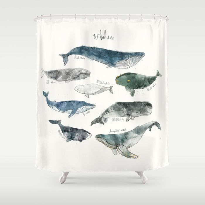 Buy Whales Shower Curtain By Amyhamilton Worldwide Shipping Available At Society6 Just One Of Millions High Quality Products