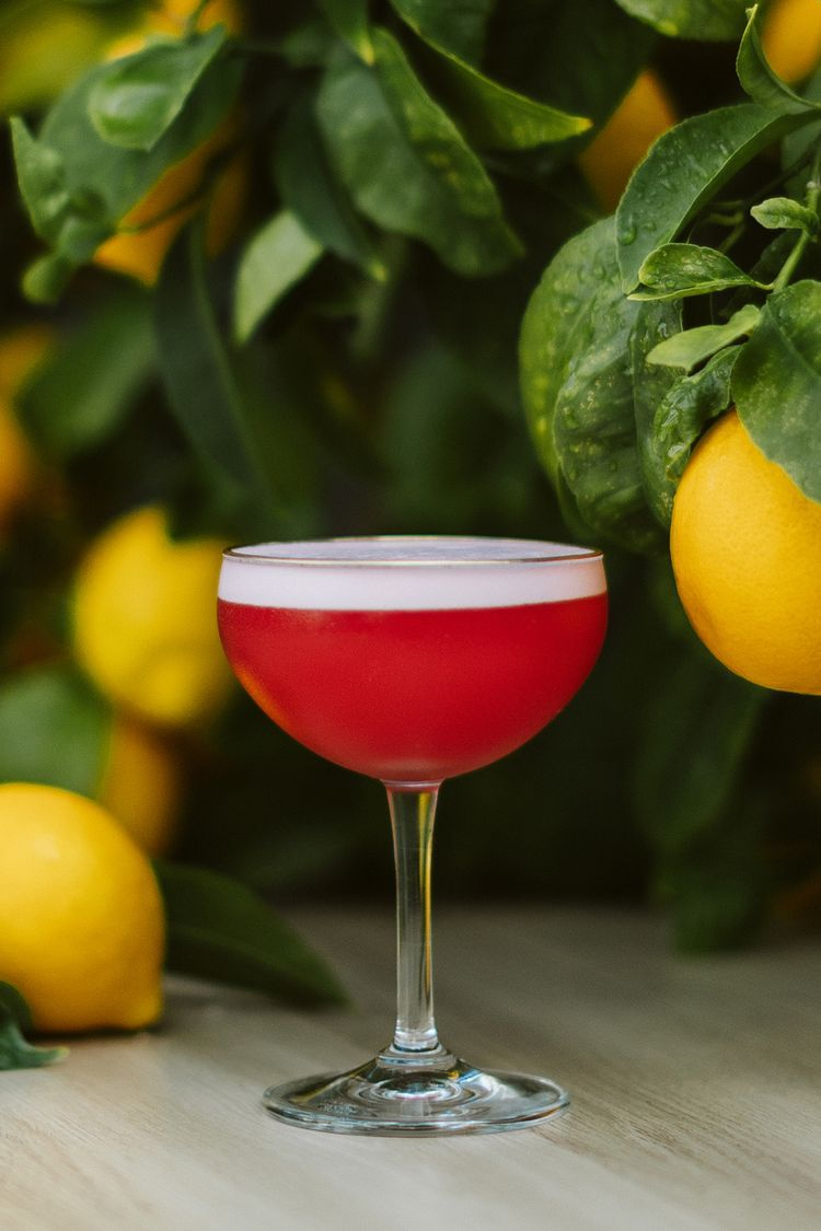 Creole Bitters And Ginger Spice Up This Campari Based Sour Recipe In 2020 Sour Cocktail Campari Ginger Spice