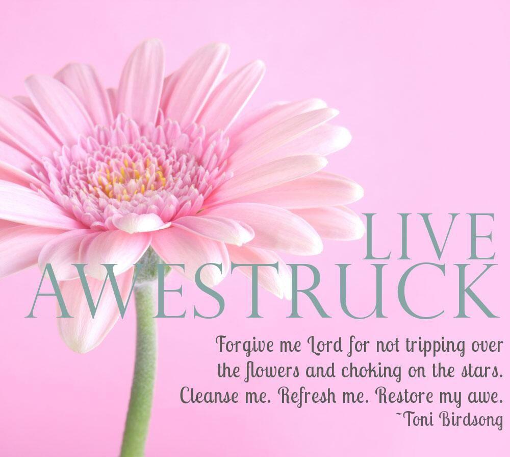 Slow down. Miracles enfold us. #AmWriting #WriteTip #JesusTweeters pic.twitter.com/gWGIHgyRKU