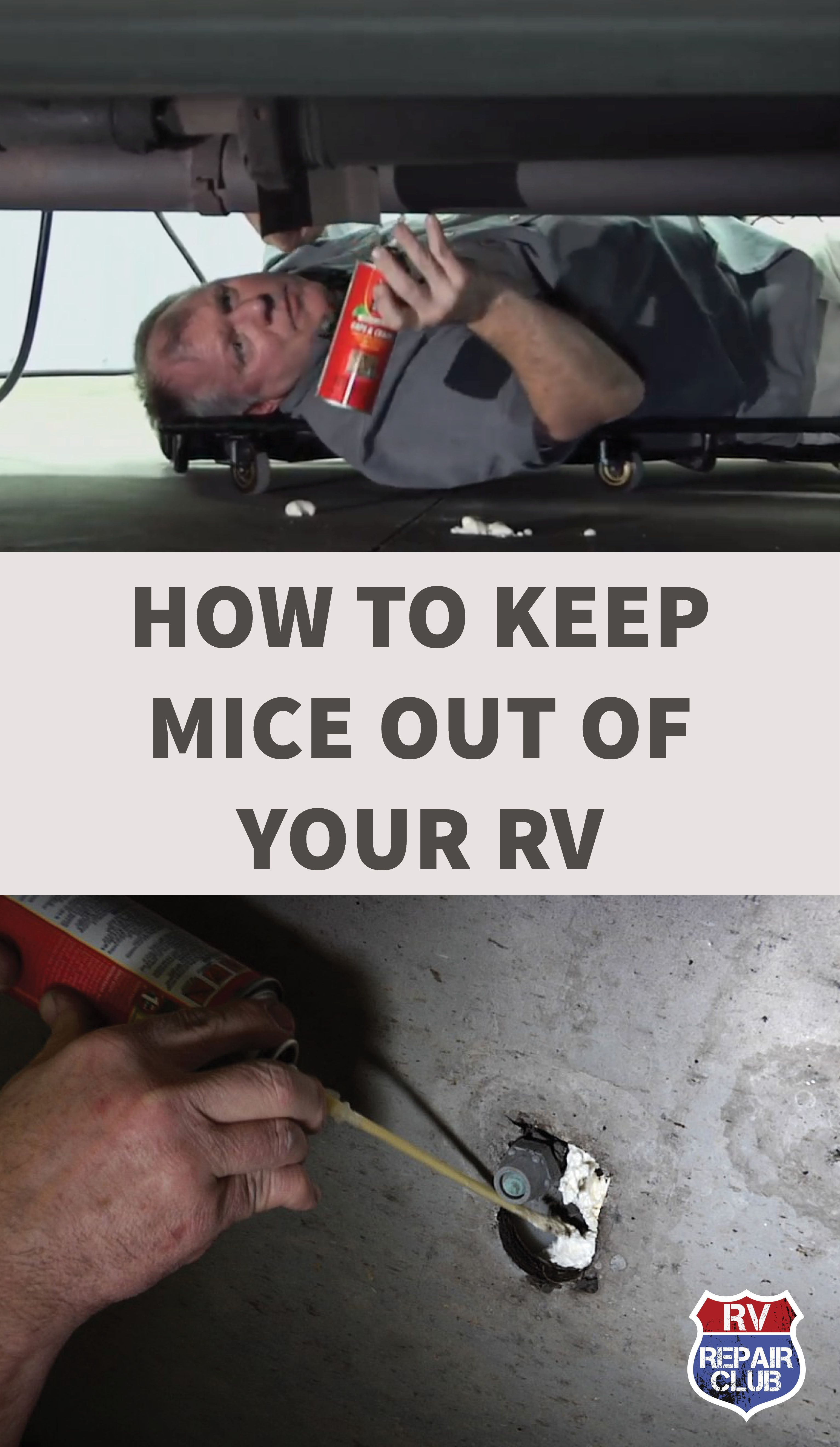 How to seal your rv to keep mice out rv repair rv
