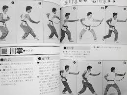 """Résultat de recherche d'images pour """"baji quan"""""""