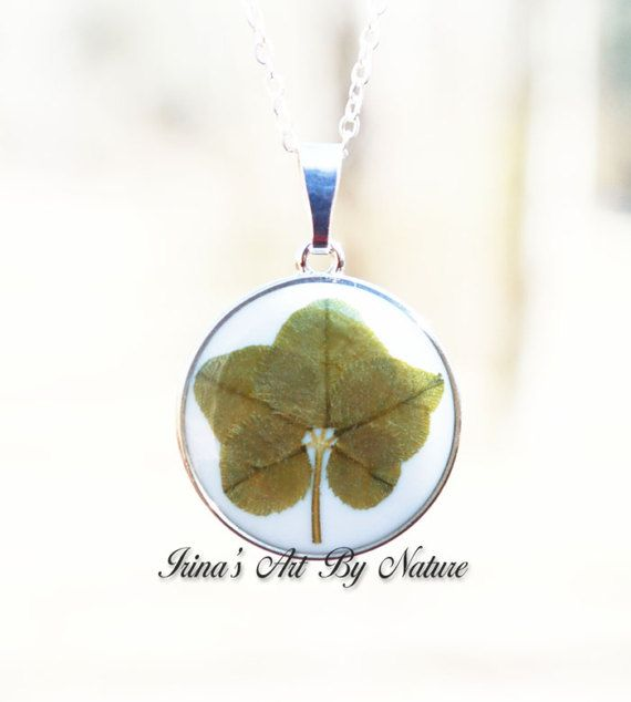 Real Five Leaf Clover Preserved In Resin By IrinasArtByNature