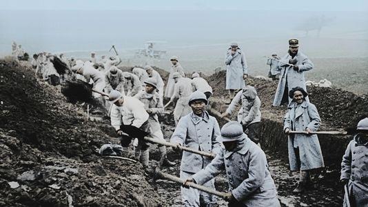 Apocalypse Verdun La Guerre A La Tele Revue Et Colorisee Guerre Premiere Guerre Mondiale Apocalypse