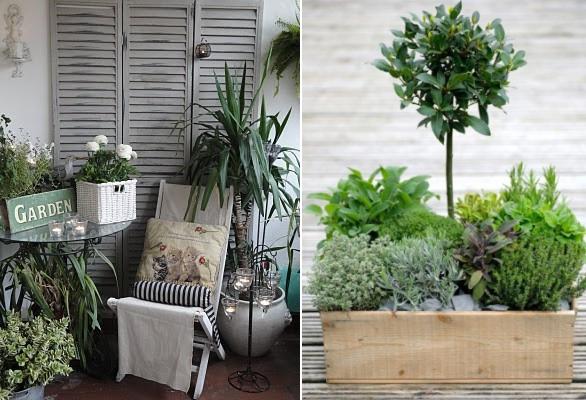 Jak Udekorowac Maly Balkon Na Wiosne 2014 Balcony Decor Indoor Gardens Balcony Plants